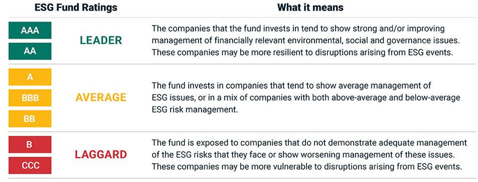 The MSCI ESG rating system